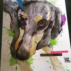 cachorro-aquarela  (6)